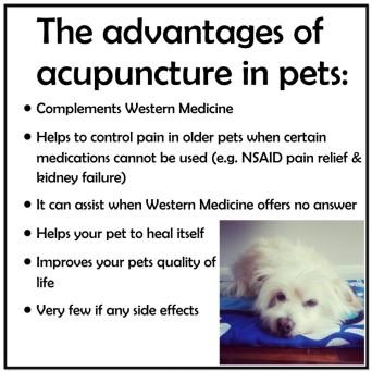 Acupuncture-slides-3-1024x1024